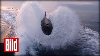 Killerwale jagen Motorboot - Orca-Wale vor Kalifornien ( angeln )