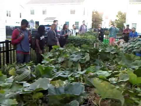 Student Temple University visit farm organic philedelphia