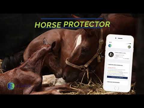 ACARiS HORSE PROTECTOR Birth Alarm