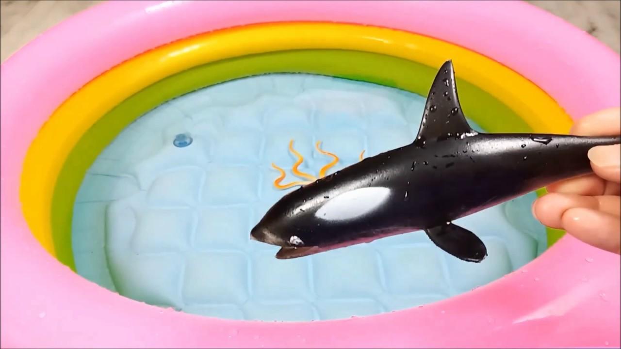 lots & Lots Of Animal Toys Sea Creatures, Wild Animals, Zoo Animals  Learn NamesOf Animals