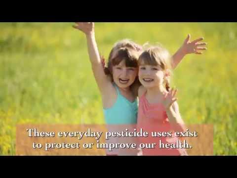 Pesticide to Your Health