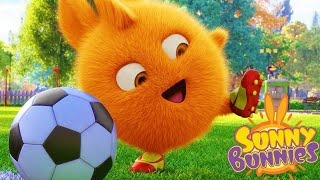 Sunny Bunnies | Time de futebol | Final da copa do mundo | Desenhos animados |WildBrain em Português