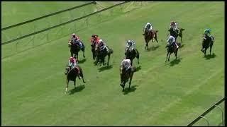 Vidéo de la course PMU PRIX WWW.TABGOLD.CO.ZA
