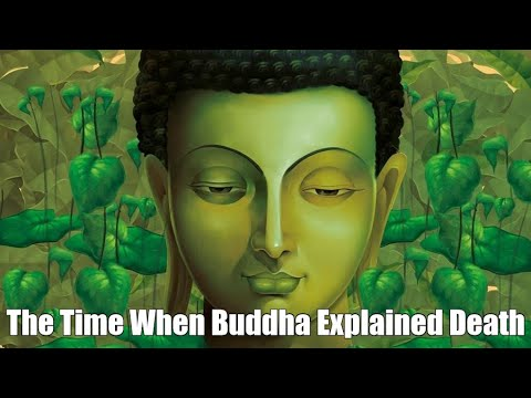 The Time When Buddha Explained Death - BUDDHA STORY