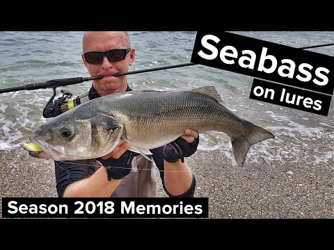 Sea Bass Fishing With Lures, Last Season Memories - Ireland (2019)
