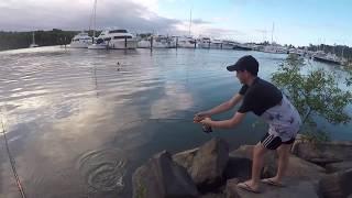 Port Douglas Fishing