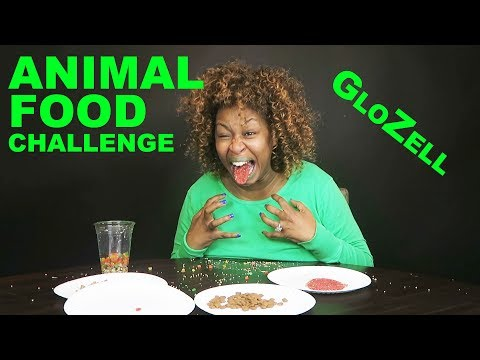 Animal Food Challenge - GloZell