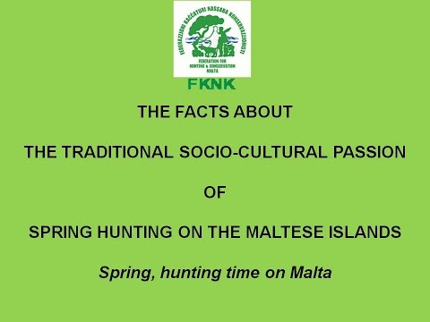 Spring, hunting time on Malta