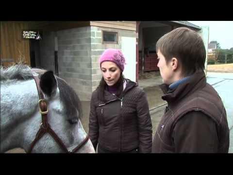 POUR L'AMOUR D'UN CHEVAL - Bande annonce 2015 VF - HDde YouTube · Durée:  2 minutes 2 secondes