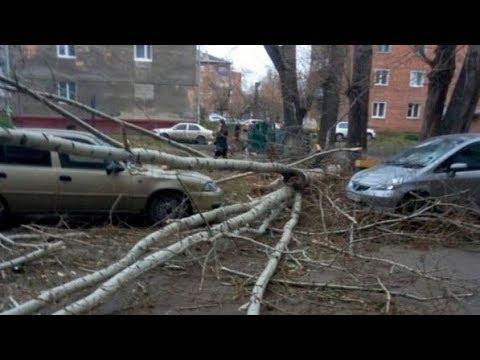 Красноярск затопило. На Кузбассе повалены деревья