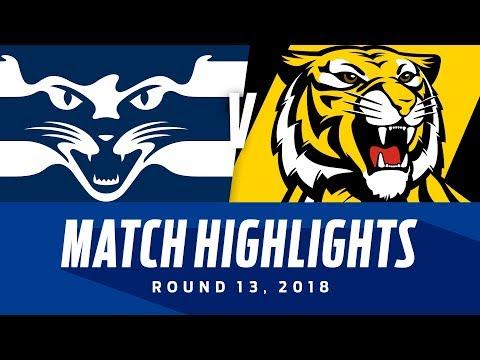 Geelong v Richmond Highlights | Round 13, 2018 | AFL