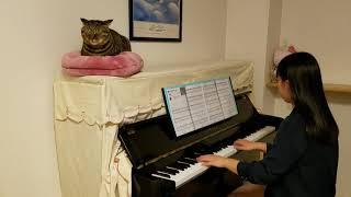 楽譜:月刊ピアノ 2020年 1月号 作詞:今井 了介 作曲:今井 了介 ピアノアレンジ:渋谷 絵梨香 NHKラグビーテーマソング #ECHO#猫と一緒...