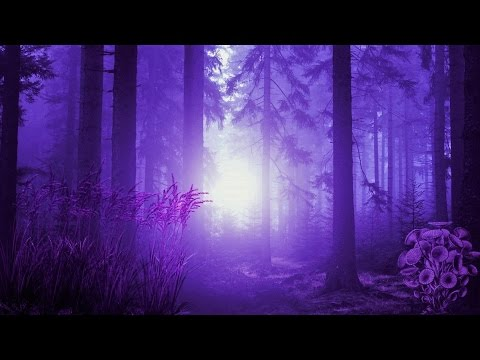 Celtic Elf Music - Moonflower Forest
