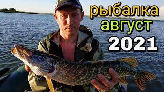 Рыбалка на спиннинг в августе Ловля щуки с лодки рыбалка 2021