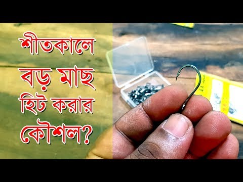 শীতকালে বড় মাছ ধরার কৌশল Amazing Winter Fishing Technique Bangla Video