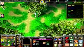 Warcraft 3.NWU.Большой гайд на деидару