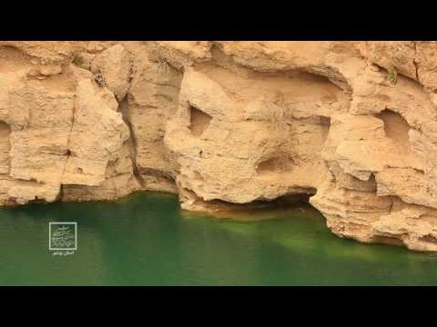 Bushehr Province