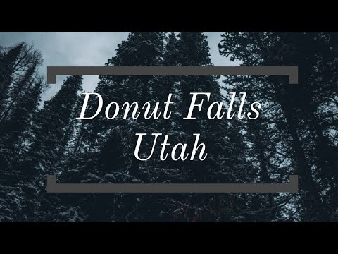 Donut Falls In The Snow
