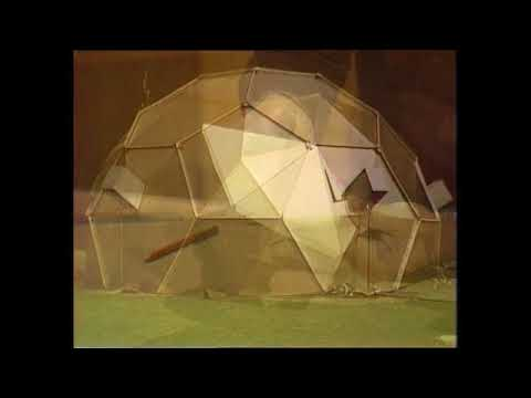 Make your own geodesic dome