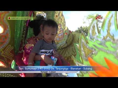 SARITI  - JARAN GOYANG LIVE IN SUMUR SAPI