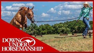 Clinton Anderson: Method Ambassador Brock Nelsen - Downunder Horsemanship