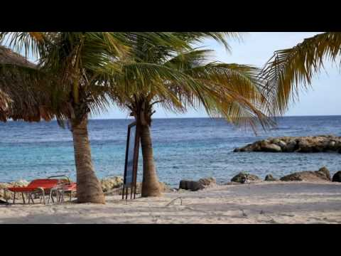 Sightseeing tour Curacao