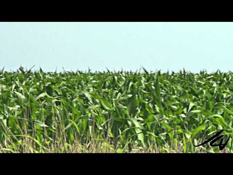 Visit Nebraska HD - YouTube