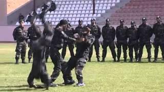 Polis Özel Harekat - 43. Dönem