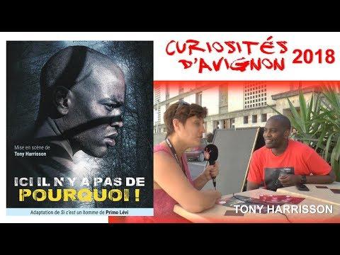 Curiosités d'Avignon - Tony Harrisson