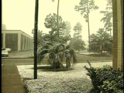 File Video 1996 Snow Mobile Alabama