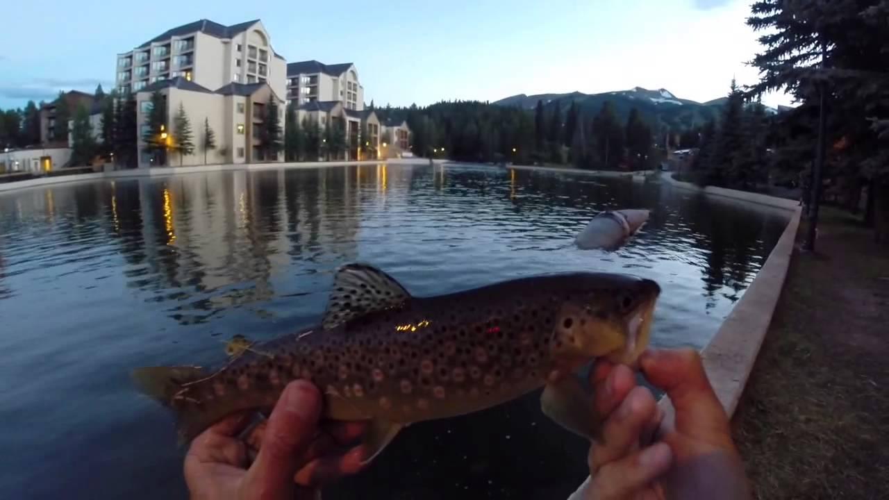 Maggie 39 s pond trout fishing breckenridge colorado youtube for Trout fishing colorado