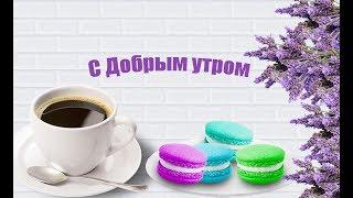 С добрым утром!Просыпайся)Хорошего дня Приветствие