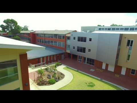 Beyond The Building- Saint Ignatius College