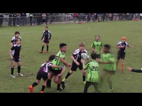 Okapi Wanderers Rugby FC U12 vs Wellington Wizards  01/29/17 at Wellington