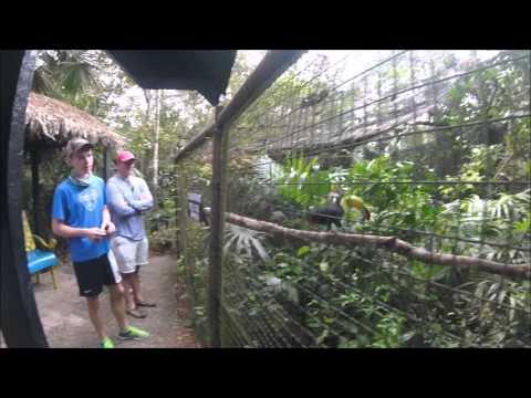 Belize Zoo 2016