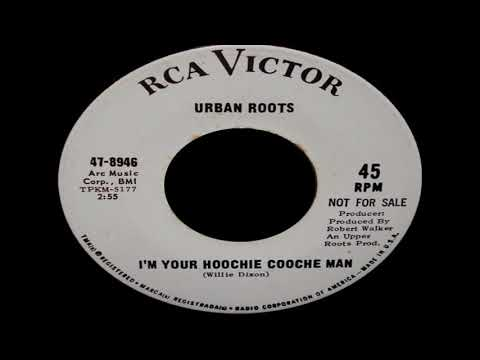 Urban Roots - I'm Your Hoochie Coochie Man (Muddy Waters Cover) mp3