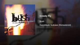 Greedy Fly