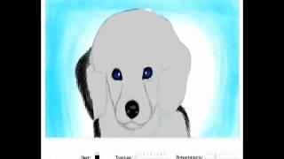 Speedpaint - Puppy Poodle By Evelina.avi