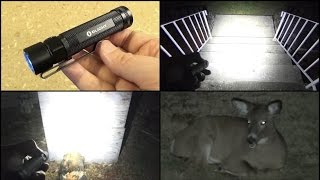 Olight S2 Flashlight Review, 1x 18650 Battery, 950 Lumens, 4 inches