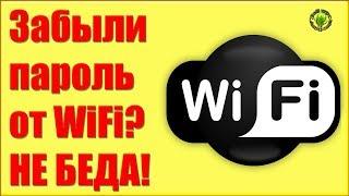Забыли пароль от WiFi? Не проблема.