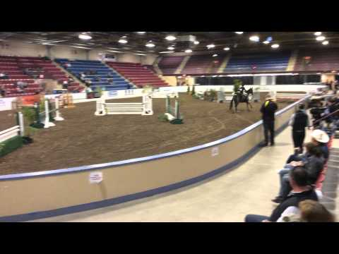 Flawless, Greenhawk Hunter Derby Finale (Maritime Fall Fair, 2014)