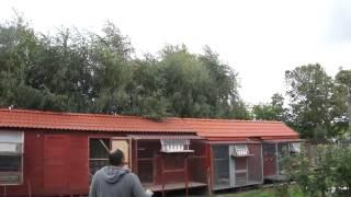 WG Kosakowo - lot finałowy - część 3 - przylot gołębi - 06.-09.2015r.