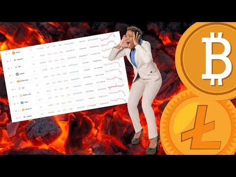 Will ALTCOINS Catch Up to BITCOIN? Cryptocurrency is HERE TO STAY!