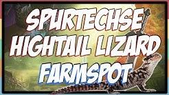 Zelda BOTW : Spurtechse (Hightail Lizard) Farmspot