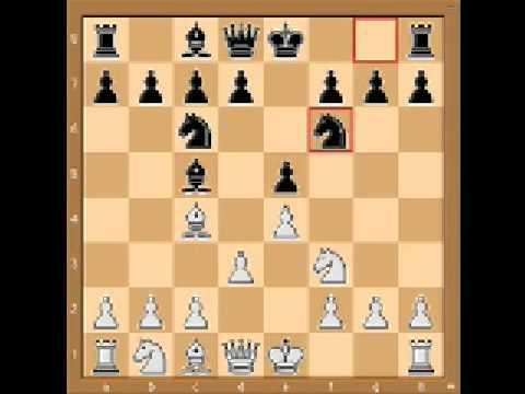 chess trap #8 Italian Game
