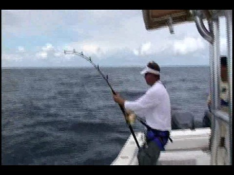 Panama Sportfishing Lodge: Marlin Fishing