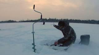 рыбалка на Ямале Ноябрьск(окуневый день))), 2017-02-21T15:23:03.000Z)