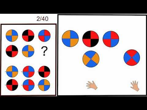 1/2 IQ test w/ model of an observer   1-20/40 [International-iq-test.com]