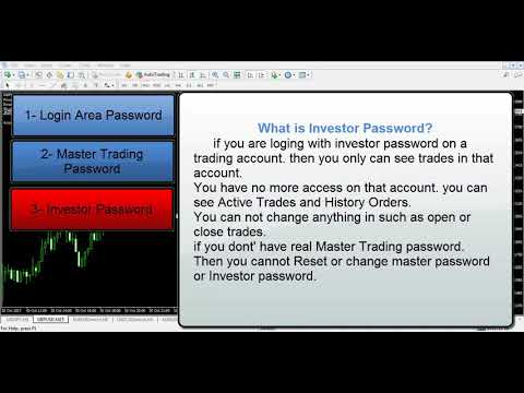 Login investor password forex