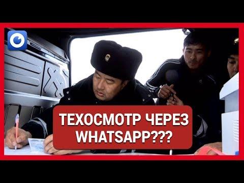 Техосмотр делается через WhatsApp? / Липовые документы на машину / Отырар новости